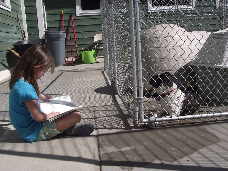 Young girl reading to a shelter dog