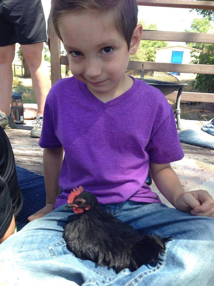 Little boy holding sweet chicken