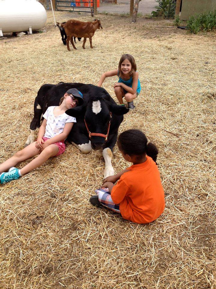 Kids loving on Bohdi at the farm.