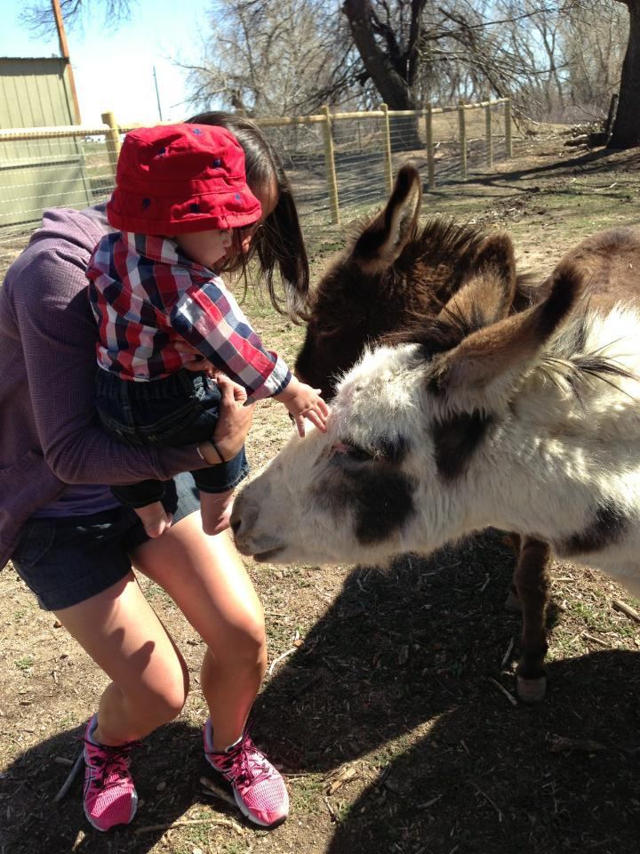 Baby loving on the donkeys at the Project: THRIVE farm.