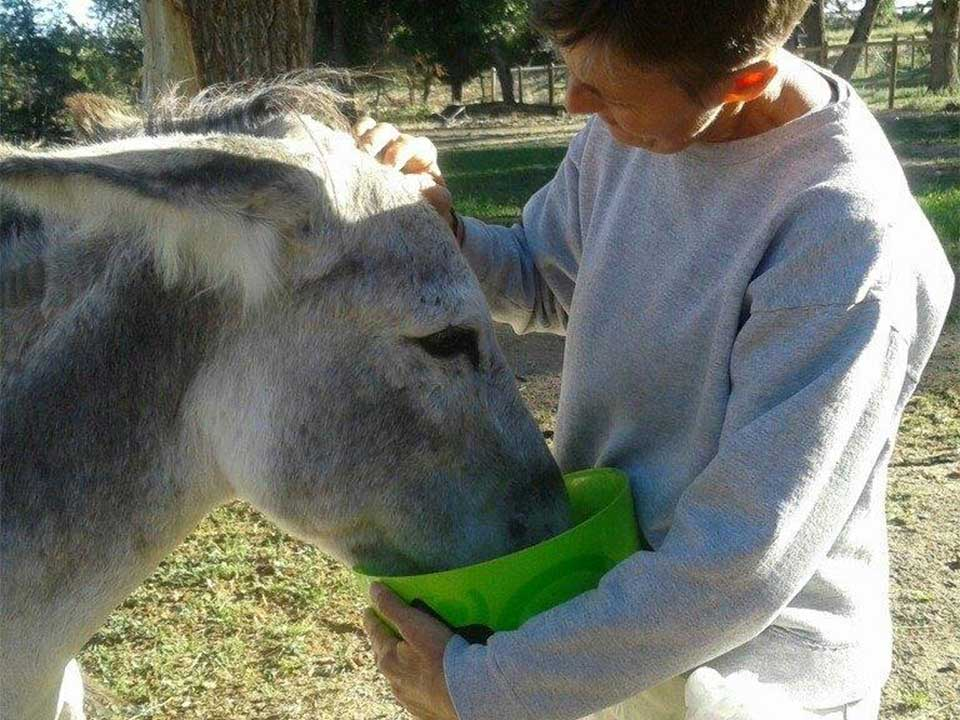 Jinna feeding Allie