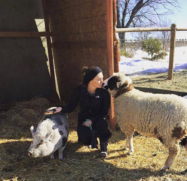 Volunteer Eden loving on Violet the pig and Poppy the sheep