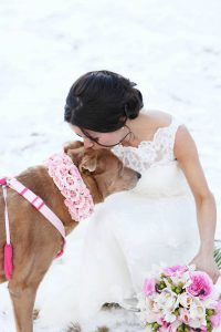 Wedding day bliss with pet dog included!