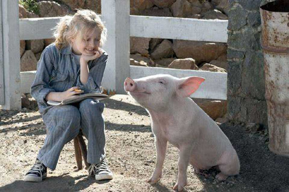 Young girl sitting with a young pig