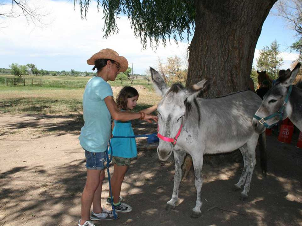 Volunteer Beth and young girl petting the donkeys